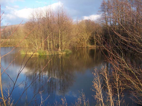 Our Private Lake In Autumn | Glan Clwyd Isa